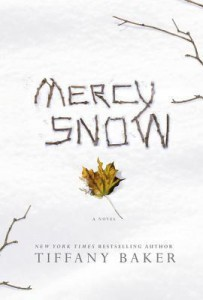 mercy snow book cover