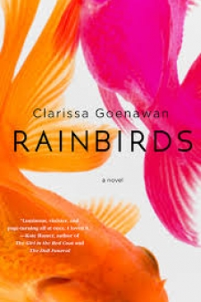Rainbirds book cover