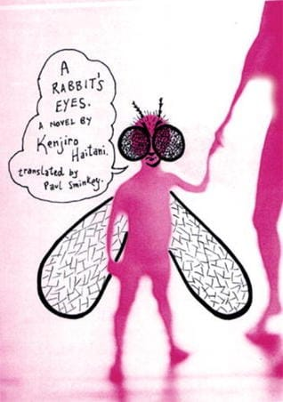 A Rabbit's Eyes book cover