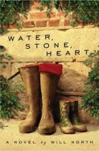 Water Stone Heart book cover