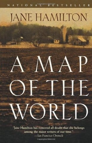 A Map of the World book cover