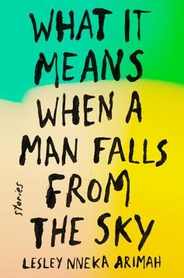 What it Means When a Man Falls From the Sky book cover