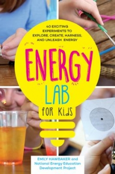 energy lab for kids book cover