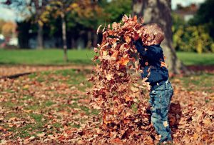 Boy Playing in Fall Leaves Outdoors