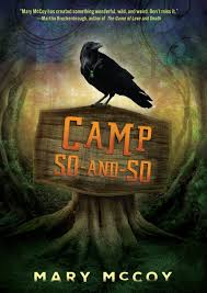 Camp So-and-So book cover