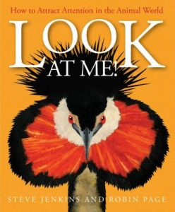 Look at Me: How to Attract Attention in the Animal World