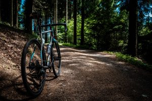bike on trail in forest