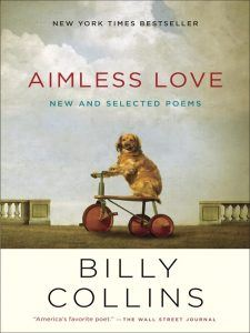 Aimless Love ebook cover