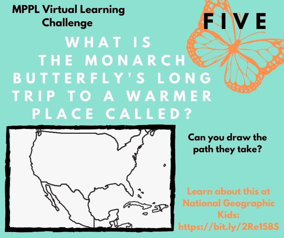 What is the monarch butterfly's long trip to a warmer place called?