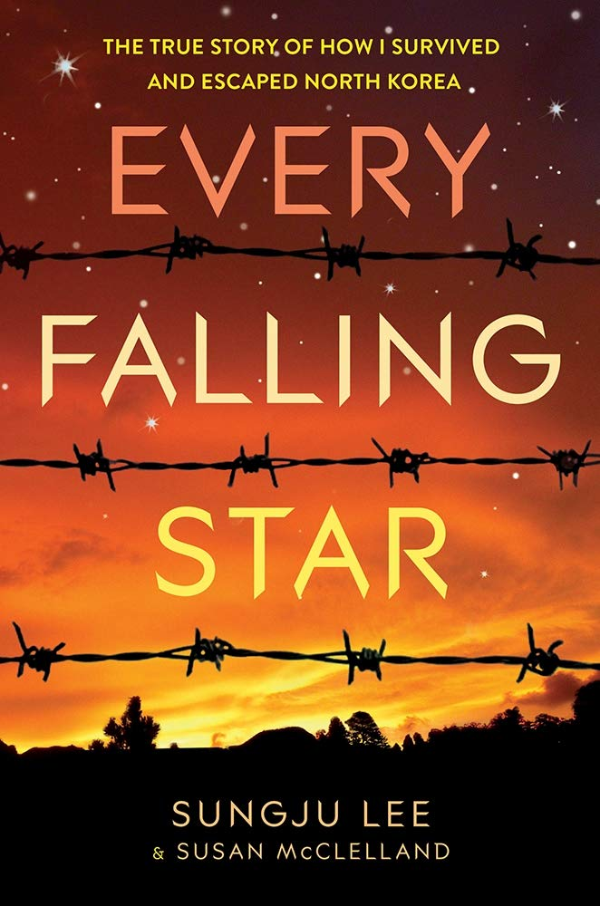 every falling star book cover
