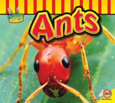 Fascinating Insects: Ants book cover