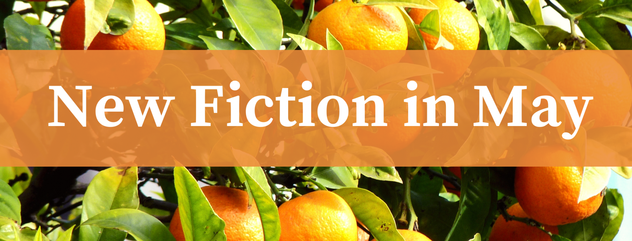 New Fiction in May