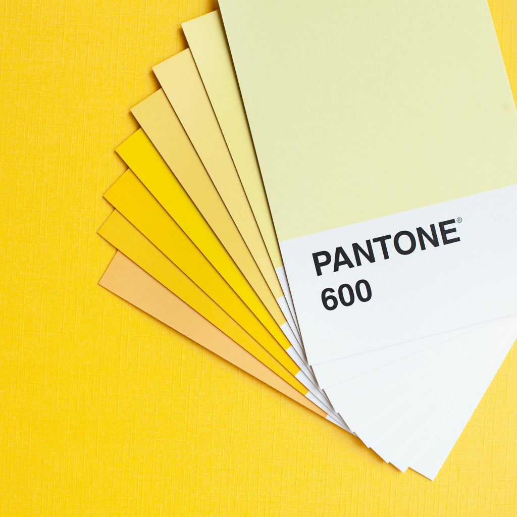 shades of yellow paint samplers