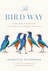 The Bird Way: A New Look at How Birds Talk, Work, Play, Parent, and Think book cover