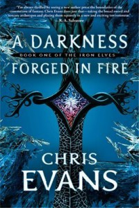 A Darkness Forged in Fire book cover