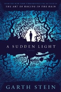Cover of A Sudden Light