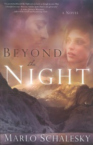 Beyond the Night book cover