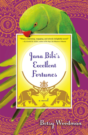 Cover of Jana Bibi's Excellent Fortunes