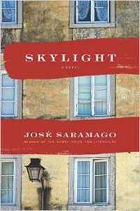 Cover of Skylight